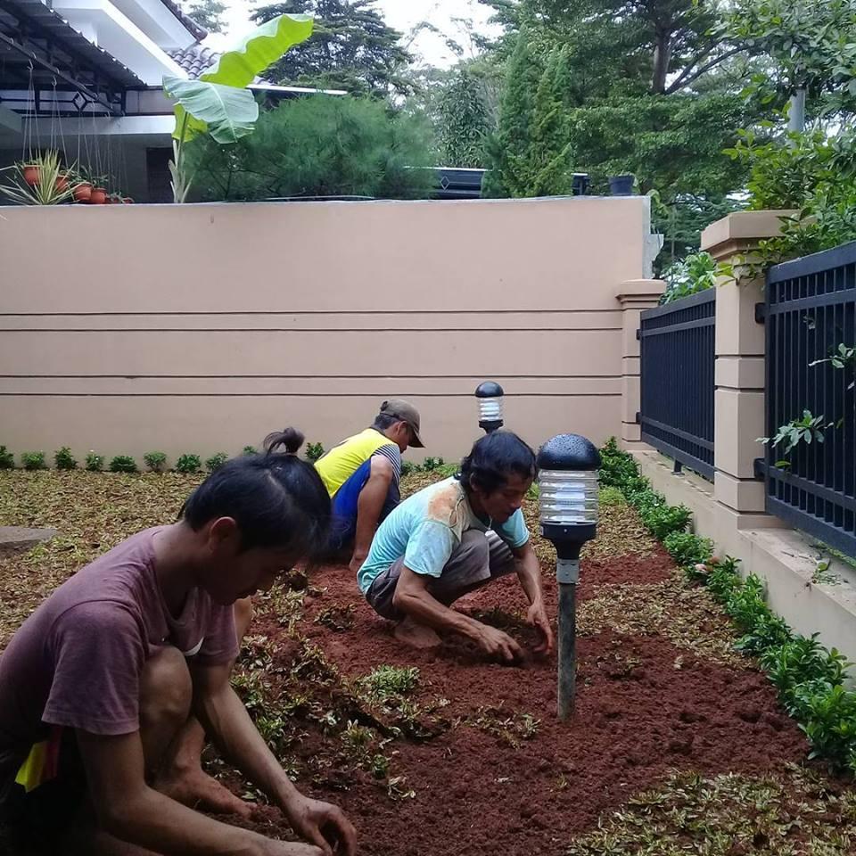 Jasa Pembuatan Taman di Makassar