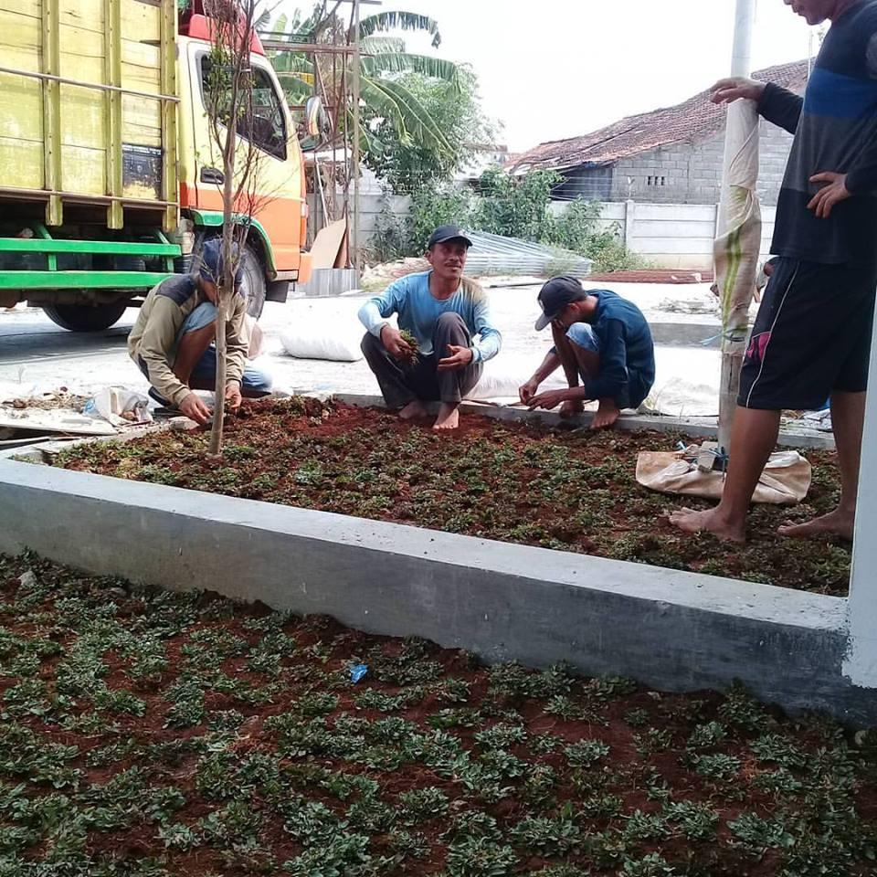 Jasa Pembuatan Taman Makassar