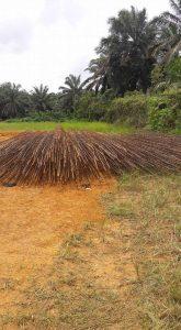 Ahli Bore Pile Kupang